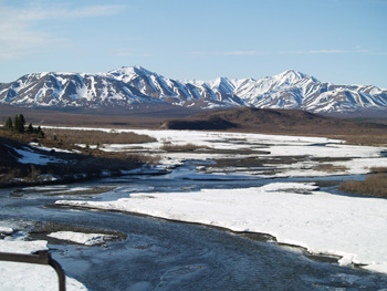 Arctic rivers are the major way black carbon is transported to the ocean.